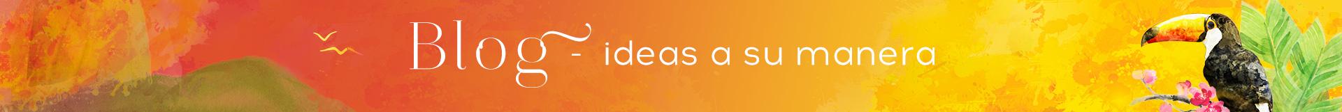 Blog – Ideas a su manera